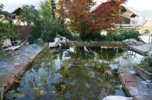 Naturnahe Gärten Hochwimmer